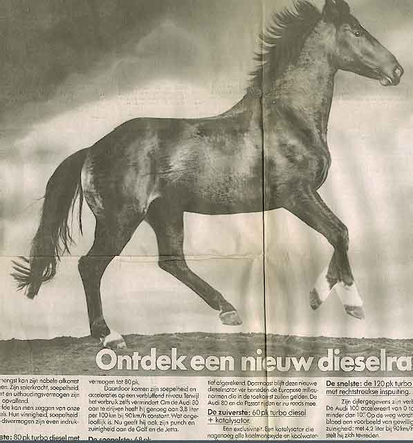 Use Of Animals In Advertisements Horses